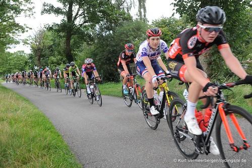 Omloop Vlaamse gewesten (309)