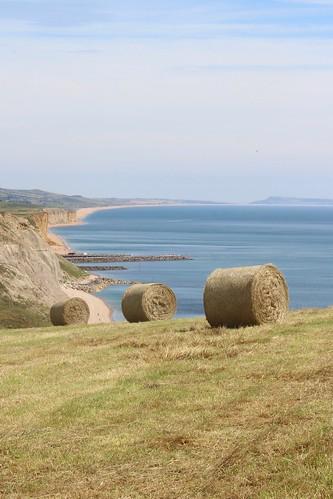 Dorset agriculture