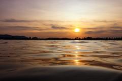 Lake Party Tonight (Yarin Asanth) Tags: calm silhouette pattern kayaking lakefever silence gold lakeconstance kayak sup reflections sunset yarinasanth gerdkozik