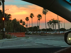 Sarasota Sunset (soniaadammurray - Off) Tags: iphone sunset sky clouds trees vehicles road parkinglot driving sarasota florida usa quartasunset