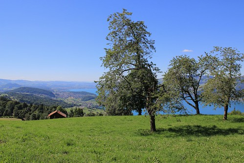Lake Thun. Vacation in Switzerland