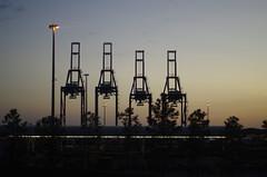 Jacksonville Port (erluko) Tags: smcpentaxf11750mm irma evacuation jacksonville port crane machinery shipping dusk