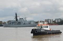 Devout (2) @ Gallions Reach  17-09-17 (AJBC_1) Tags: london royalnavy frigate type23frigate hmsargyll f231 warship nato ©ajc ship boat vessel military rn england unitedkingdom uk navy navalvessel britisharmedforces gallionsreach dlrblog northwoolwich eastlondon newham londonboroughofnewham nikond3200 defenceandsecurityequipmentinternational2017 dsei dsei2017 armsfair royalalbertdock rad royaldocks docklands londonsroyaldocks devout riverthames thamescraftdrydockingservicesltd damen tug tugboat ajbc1 shipsinpictures