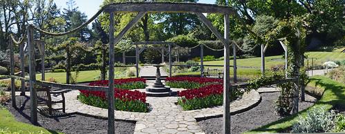 brodick castle  wall garden 1