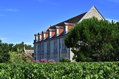 France 2017 - Domaine de La Solitude - Pessac-Léognan (philippebeenne) Tags: france bordeaux pessacléognan grandcruclassé vins wine graves chateau