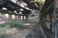 come back (flyerkat_L.E.) Tags: lokschuppen bahn abandoned urban nature film analog kodakultramax400 nikon f80 35mm