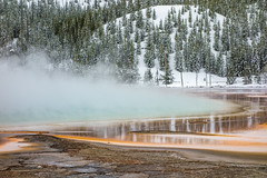 Yellowstone National Park - Winter-26 (hotcommodity) Tags: yellowstonenationalpark winter snow ice frozen grandprismaticsprings hotsprings geothermal nature wilderness mist steam clouds grey spring buffalo bison