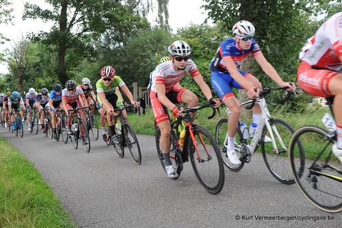 Omloop Vlaamse gewesten (334)
