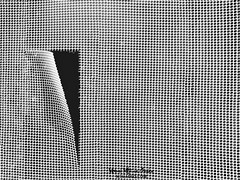 Escape (Mimadeo) Tags: hole fence broken metal escape cracked breakthrough texture background wall pattern barrier abstract mesh security safety crack grid copyspace black white blackandwhite