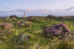 White Edge Trig Point (l4ts) Tags: landscape derbyshire peakdistrict darkpeak goldenhour sunrise whiteedge heather moorland bigmoor gritstoneedge gritstonetors trigpoint appicoftheweek