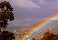 RAINBOW view from WEST HOBART (Lani Elliott) Tags: nature naturephotography lanielliott weather weatherphotography rainbow sky trees light bright mauve clouds view scene scenic scenictasmania westhobart tasmania australia moody superb beautiful fantastic wow gorgeous incredible