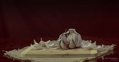 Garlic 204 wm (L Urquiza) Tags: still life naturaleza muerta ajo garlic bodegon