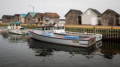 Seldom Seen (Bert CR) Tags: atlantic eastcoast holiday seaside vacation seldomseen tunafishing princeedwardisland morell redheadroad boats fishing fishingboats fishers