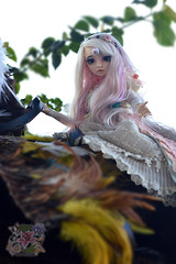 Vienna (crazykimochi) Tags: vienna newfamily2014 nf14 nf2014 minifee fairyland bjd mnf msd balljointeddoll