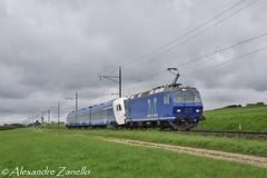M-Rail: Re 456 111, Altnau (CH) (Alexandre Zanello) Tags: re456 mrail müller gleisbau stadler flirt flirt3 arriva altnau suisse schweiz svizzera switzerland