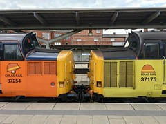 37s nose to nose (jimscott2) Tags: 0z37 derby 37254 37175 colas