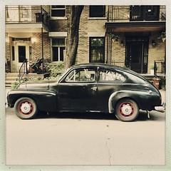 Elle a encore de beaux restes... (woltarise) Tags: volvo444 automobile montréal plateau