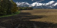 Wide fields - II (KF-Photo) Tags: acker aussaat einsiedel fahrspur felder weite herbstmalerei
