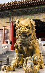Gilded bronze lion with left paw on baby cub at the Gate of Heavenly Purity, or Celestial Purity (Qianqingmen), Beijing (Victor Wong (sfe-co2)) Tags: ancient architecture asia asian beijing bronze built capital celestial china chinese city culture destination dynasty east empire entrance famous forbidden gate gild gugong heavenly heritage history imperial landmark lion majestic ming monument museum nobility old oriental palace peace peking people purity qianqingmen sightseeing symbol tourism tourist traditional travel unesco statue sculpture