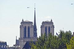 2017.07.14.063 PARIS - les tours de Notre-Dame (alainmichot93 (Bonjour à tous - Hello everyone)) Tags: 2017 france îledefrance seine paris architecture cathédrale notredamedeparis tour flèche ville