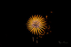 Busrt of Yellow (Donald.Gallagher) Tags: fireworks greenwood horizontal longwoodgardens northamerica pa pennsylvania public summer typecolor typelightroom typemanualfocus typeportrait typewideangle usa