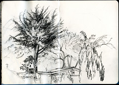 A tree at the bottom of my son's back garden. (Martin Blunt) Tags: pencil sketch sketchbook notebook trees garden drawing