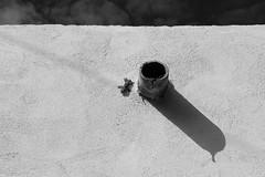 Lézard et tuyau (ZUHMHA) Tags: marseille france monochrome lizzard lézard mur wall texture matière sky ciel animal ombre shadow light lumière soleil sun line ligne geometry géométrie
