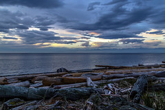 Clouds (Paul Rioux) Tags: morning daybreak dawn beach seashore seascape seaside driftwood clouds water ocean sea weather reflections prioux
