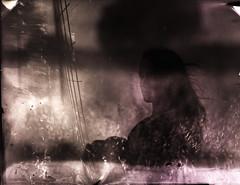 Vision (Claudio Castelli) Tags: 210mm 4x5 9x12 abstract analog art artistic bokeh disney doubleexposure expired expiredfilm film grass grosseto italia italy landscape largeformat mentor meyergorltz nature portrait reflex shallowdof spontaneous toscana trioplan tuscany vegetation vision claudiocastellilf