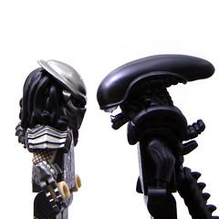 alien_vs_predator_main