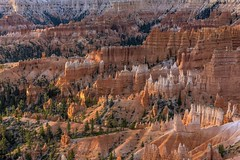 *erosion world* (albert.wirtz) Tags: albertwirtz utah usa vereinigtestaaten worldoferosion erosionworld erosion badlands landscape landschaft unitedstates hiking wandern hikingutah utahhiking fall autumn herbst sunrisepoint bryce bryceamphitheater nationalpark brycecanyonnationalpark brycecanyon canyon natur nature natura paesaggi sunrise sonnenaufgang usasouthwest southutah southwest usasüdwesten nikon d810 rimtrail garfieldcounty paysage