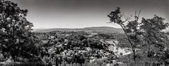 Provence 07 2017012 (Patrick.Raymond (3M views)) Tags: 04 haute provence valençole plateau lavande argentique mallefougasse lomography tmax horizon perfekt