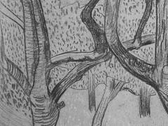 SERUSIER Paul - Le Verger (Louvre RF40965-Recto) - Detail 03 (L'art au présent) Tags: details détail détails detalles drawings dessins croquis étude study studies sketch sketches dessins19e 19thcenturydrawings dessinfrançais frenchdrawings peintresfrançais frenchpainters louvre paris france musée museum arbres tree trees trunk orchard grove nature