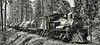 Shay locomotive hauling logs ca1915 (SSAVE w/ over 9 MILLION views THX) Tags: steamlocomotive shay limalocomotiveworks lumbering 1915 lumberindustry usa