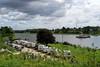 P1290868 (Lumixfan68) Tags: sehestedt wohnmobilstellplätze wohnmobilplätze fähre fähranleger nordostseekanal schleswigholstein deutschland germany