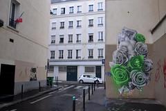 Ludo (Ausmoz) Tags: paris street art streetart rue urbain urban mur murs wall walls sticker stickers poster posters collage collages pasteup ludo vert green nature revenge