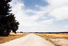 Endless road (nicolasgastaud1) Tags: endless road nature french field countryside filmphotography 35 35mm niceweather