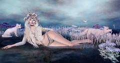 EIR (Duchess Flux) Tags: fantasygachacarnival shinyshabby prismagica deviousmind lode olive amarabeauty catwa zibska white~widow reigh anlar air jian anc secondlife fantasy sl