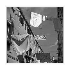 resistance • venice, italy • 2016 (lem's) Tags: minolta autocord venezia venice venise italy italie italia sheets draps laundry linge street rue resistance residenti resistenti