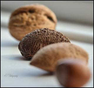 Nuts..