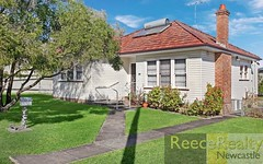 29 Mary Street, Jesmond NSW
