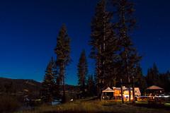 Harmony 💙🌲 Harmon Lake, BC (Michael Thornquist) Tags: happyinthewoods harmonlake merrittbc lake camper camping britishcolumbia trees 604now photos604 explorecanada ilovebc pacificnorthwest pnw canada explorebc