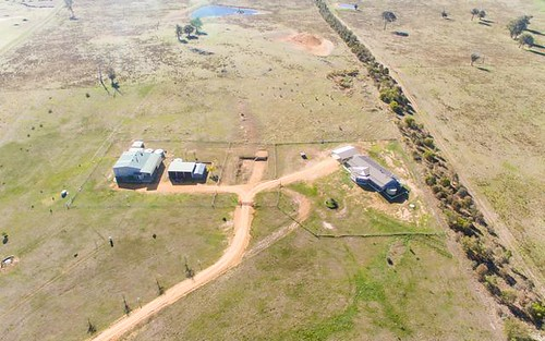 846 Geegullalong Road Murringo Via, Young NSW