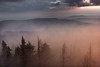 Orange haze on the Mogielica (Dariusz Wieclawski) Tags: beskidwyspowy gory nikon nikond700 nikondigital d7002470mmf28 2470mm28 haze mist fog mountainsclouds mountains trees morningrain morning sunrise dawn sundawn leefilters leegrad