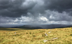Rain & Shine! (smudger600) Tags: dartmoor stormy rain clouds iphone6