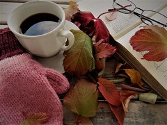 Autumn Time (rachael242) Tags: autumn beautiful fall season seasonal gloves mittens wool leaves leaf glasses spectacles book desk table wood wooden abstract still life close up coffee cup saucer mug drink red green yellow orange colors