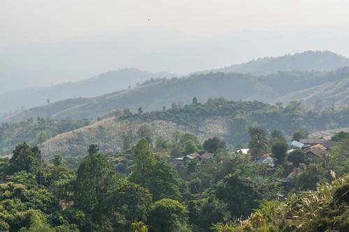 Vallée de la rivière Kok - Chiang Rai