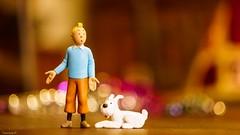 Crazy Couples (YᗩSᗰIᘉᗴ HᗴᘉS +7 000 000 thx❀) Tags: crazycouples smileonsaturday tintinetmilou tintin milou belgium belgique bokeh bokehlicious sony helios helios442 toy toys miniature hensyasmine