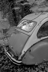 I Got 5 On It (Barnaby Nutt) Tags: canoneos5 ddx film fp4 ilford citroen 2cv6 special solo parking returning nature