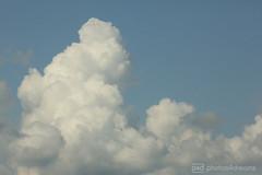 sunday-clouds (photos4dreams) Tags: gersprenz03092017p4d gersprenz münster hessen germany naturschutz nabu naturschutzgebiet photos4dreams p4d photos4dreamz nature river bach flus naherholung wolken wolke cloud clouds canoneos5dmark3